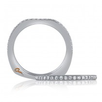 18 KARAT WHITE GOLD DIAMOND WEDDING BAND with 26 Diamond(s) 0.25ctw